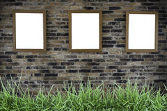 Three photo frames on wall. With grass Royalty Free Stock Photo