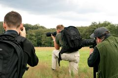 Three photographing fowlers Stock Images