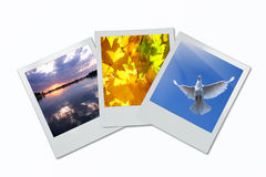 Three photos. A set of three photos in instant frames Royalty Free Stock Photos