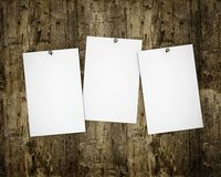 Three photos on wooden board royalty free stock photos
