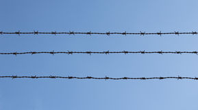 Three pieces of barbed wire Stock Images