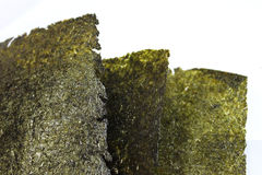 Three pieces of sea weed. Sea weed Japanese food seafood snack royalty free stock photos