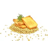 Three pieces of toast bread with twig of rosemary on grains of wheal on white background royalty free stock image