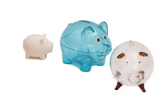 Three Piggy Banks Royalty Free Stock Photo
