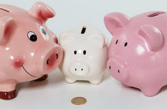 Three piggybanks on table with a coin closeup.  Stock Photo