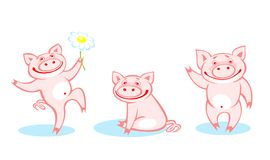 Three pigs. Three amusing pink pigs on a white background Royalty Free Stock Photo