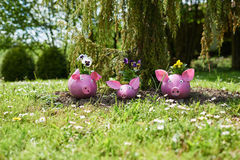 Three pigs. From plastic bottles to make pots for flowers,summer flower meadow Royalty Free Stock Image