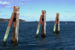 Three Pilings. Along the waterfront in Portland Maine these pilings line a public boat ramp Royalty Free Stock Images