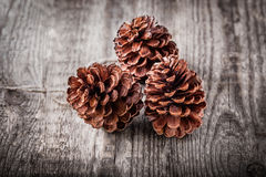 Three pine cones. Natural wooden background with three pine cones Stock Photos