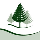 Three Pine Trees. Each element is separate for easy editing Royalty Free Stock Photo