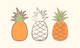 Three pineapple. Сaricature. Vector illustration Royalty Free Stock Image