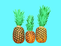 Three pineapple on blue background, ananas. Three pineapple on blue background, colorful ananas Stock Images