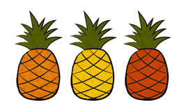 Three pineapple Stock Photos