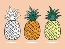 Three pineapple Stock Images