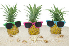 Three pineapple with sunglasses Royalty Free Stock Photos