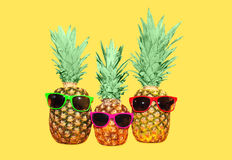 Three pineapple with sunglasses on yellow background Stock Photos