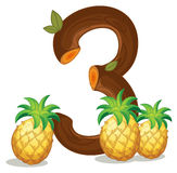 Three pineapples Stock Image
