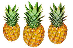 Three pineapples isolated on white Stock Image