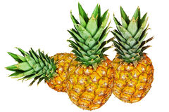 Three pineapples isolated on white. One lies, two are standing Stock Images