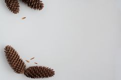 Three pinecones. Pattern with pinecones on a white background stock images