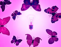 Three pink butterfly, isolated on white background Stock Photography