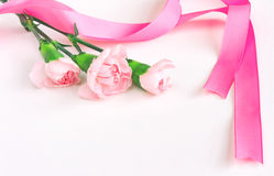 Three pink carnations with silk ribbon Stock Image