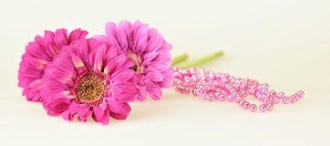 Three Pink Gerbera Royalty Free Stock Images