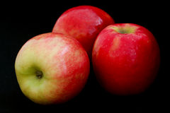 Three pink lady apples Royalty Free Stock Photography
