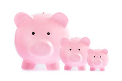 Three pink piggy banks Royalty Free Stock Photos