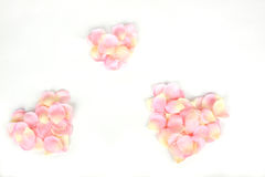 Three pink rose petal hearts Royalty Free Stock Image