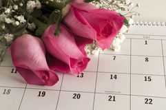 Three Roses on Calender. Three pink roses on a calender open to Valentine's Day Stock Photos