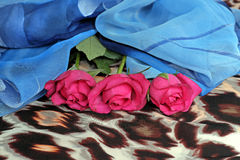 Three pink roses on a scarf with leopard pattern. And a blue scarf, fashion, accessories Royalty Free Stock Images