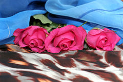 Three pink roses on a scarf with leopard pattern. And a blue scarf, fashion, accessories Stock Photo