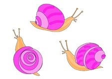 Three pink snail Stock Image