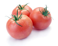 Three pink tomatoes with drop Stock Image