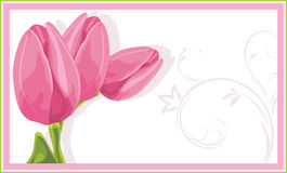 Three pink tulips in the decorative frame vector illustration