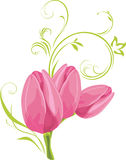 Three pink tulips with decorative sprig. Illustration Royalty Free Stock Photos