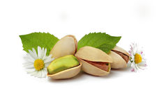 Three pistachios, flowers and leafs Royalty Free Stock Image