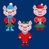 Three pixel christmas pigs in warm clothes stock images