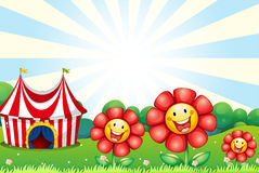 Three plastic flowers and a tent at the top of the hill Stock Images