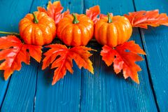 Three plastic pumpkins and red leaves fall concept Royalty Free Stock Photos