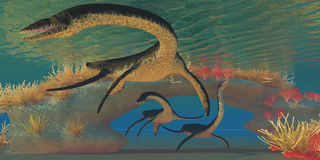 Plesiosaurus Sea Stock Image