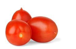 Three plum tomatoes. Isolated tomatoes. Three fresh plum tomatoes isolated on white background royalty free stock photo
