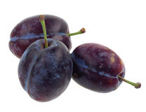Three plums isolated royalty free stock photos