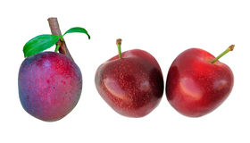 Three plums Stock Photos
