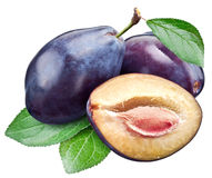 Three plums with leaf. Clipping paths. stock photo