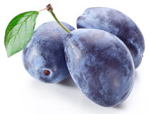 Three plums with leaf. Stock Images