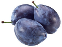 Three plums with leaf. stock photos