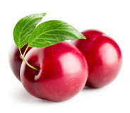 Three plums with leaf Royalty Free Stock Photos