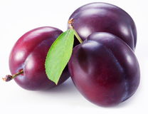 Three plums with leaves Stock Images